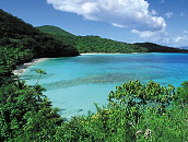 Virgin Islands Shoreline